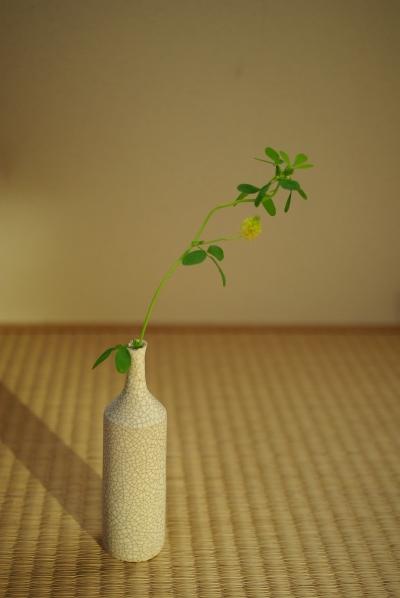 和田麻美子さんの作品