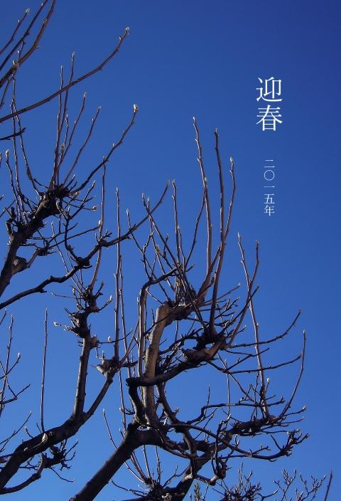 k-2015寒中DSCN1884